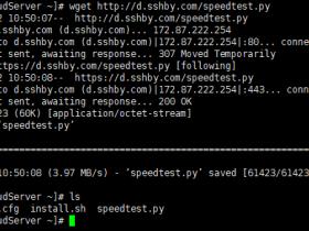 Linux 服务器带宽速度测试脚本